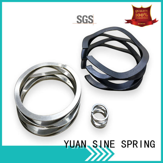 stainless wave spring manufacturers stainless with different shape for guitar